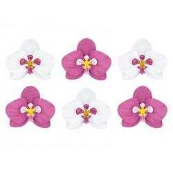 Dekoracje papierowe Aloha - Orchidee