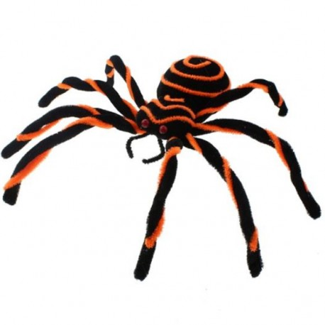 Pająk czarno-pomarańczowy